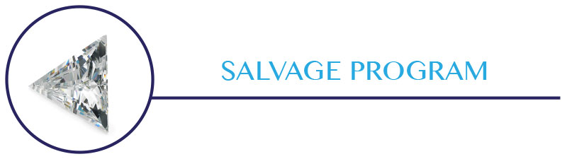 SALVAGE-PROGRAM